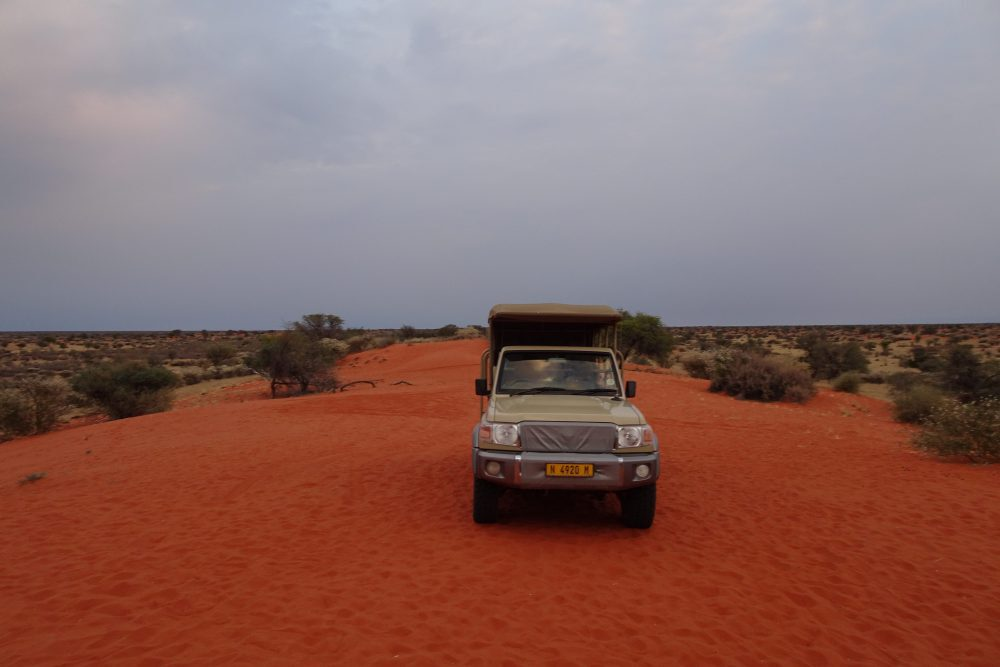 Thumbnail Kalahari