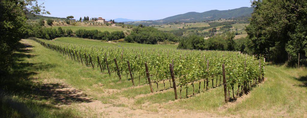 Toscane wijnroute