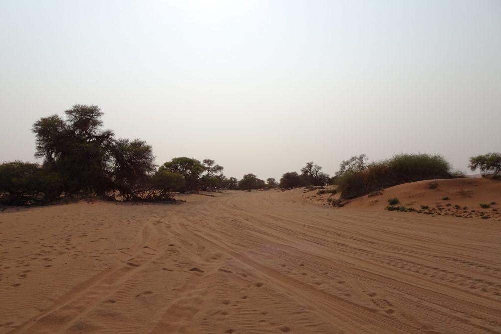 Deadvlei zandweg