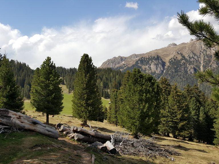 Bergweide Dolomieten