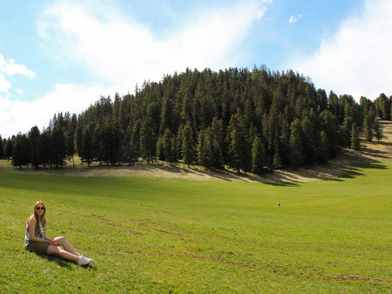 Alpenweide Dolomieten