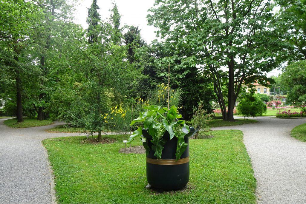 Botanische tuin Zagreb