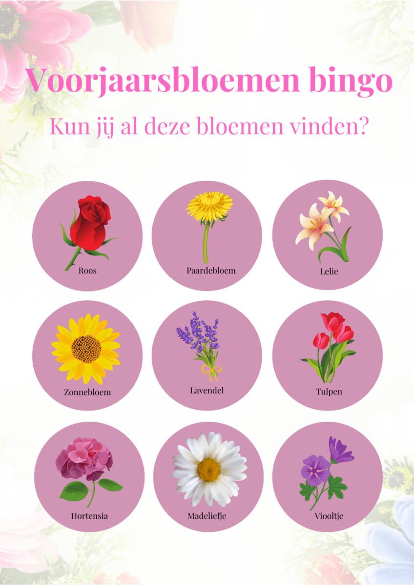 Voorjaarsbloemen bingo kaart
